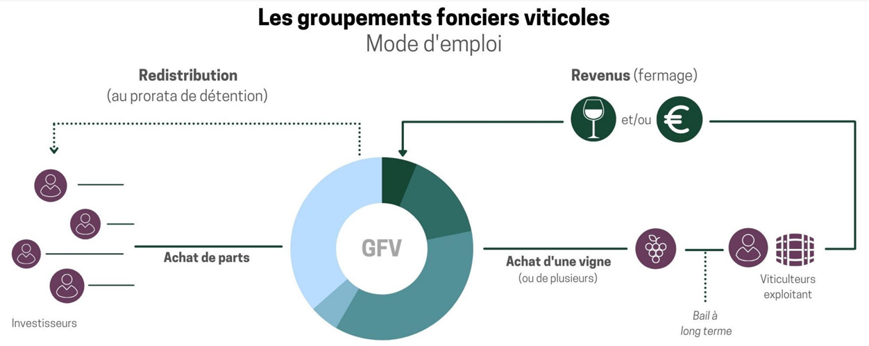 Quel est le fonctionnement du placement français en Groupement Viticole - Mode Emploi Schéma